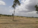 Industrial Land sale pune 4
