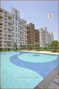 Beverly Hills Hinjewadi Large size 2 bhk flat for resale